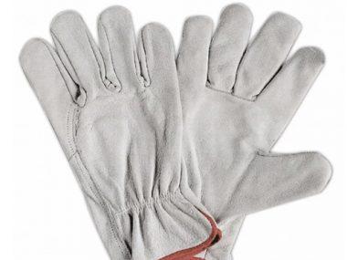 Argon Gloves - AK LO27G